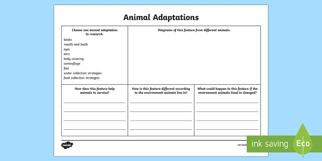 Animal Adaptations Research Worksheet Worksheet