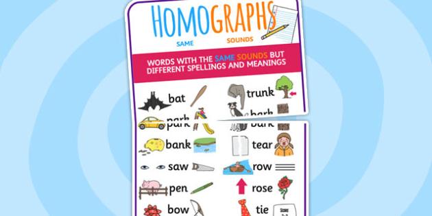 Large Homograph Display Poster - homograph, display, poster