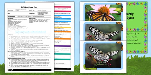 Playdough Caterpillars EYFS Adult Input Plan and Resource Pack - adult focus