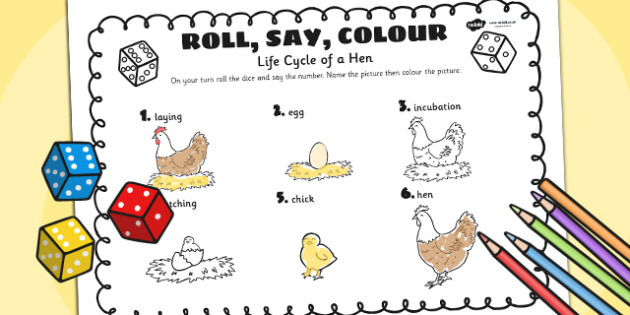 Life Cycle Of A Hen Roll Say Colour - animals, life cycle, colour