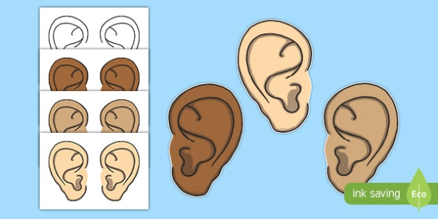 Ears Display Cut Outs