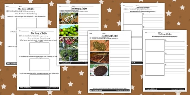 The Story of Coffee Differentiated Worksheets Medium - food