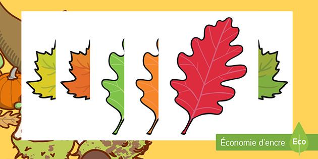 activit u00e9s de d u00e9coupage   les feuilles d u0026 39 automne