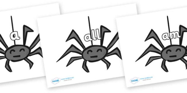 Foundation Stage 2 Keywords on Spiders - FS2, CLL, keywords, Communication language and literacy,  Display, Key words, high frequency words, foundation stage literacy, DfES Letters and Sounds, Letters and Sounds, spelling