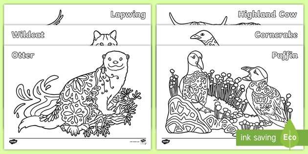 Scottish Animals Mindfulness Colouring Pages