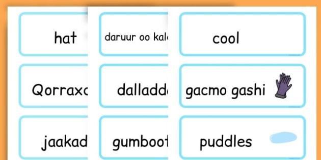 Winter Word Cards - seasons, weather, key words, visual aids  - Somali
