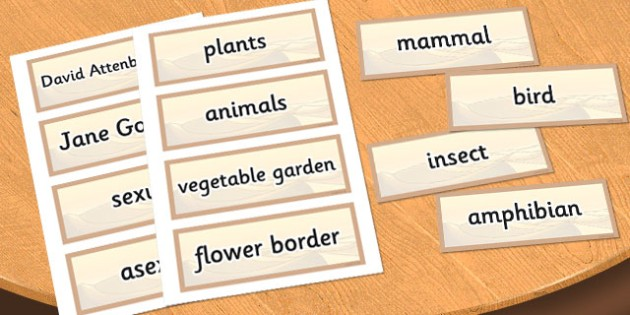 Year 5 Living Things their Habitats Scientific Vocabulary Cards