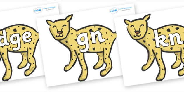 Silent Letters on Cheetahs - Silent Letters, silent letter, letter blend, consonant, consonants, digraph, trigraph, A-Z letters, literacy, alphabet, letters, alternative sounds