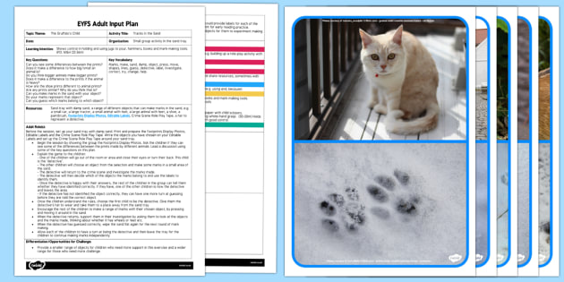 EYFS Tracks in the Sand Adult Input Plan and Resource Pack