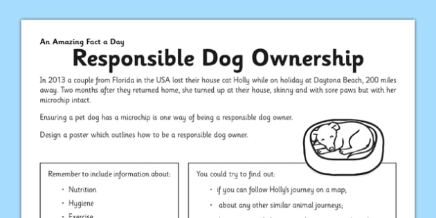 Responsible Dog Ownership Worksheet / Activity Sheet - pet, dog