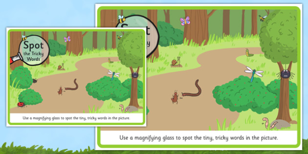 Phase 2 Tricky Words Magnifying Glass Activity Minibeasts Scene Poster - phase 2, tricky words, magnifying glass, activity, minibeasts, scene poster, display, poster, scene
