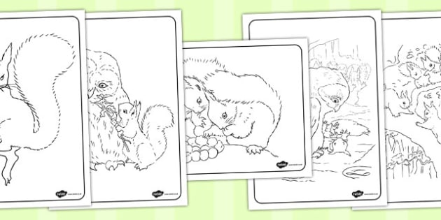 The Tale of Squirrel Nutkin Colouring Sheets - squirrel nutkin, colour