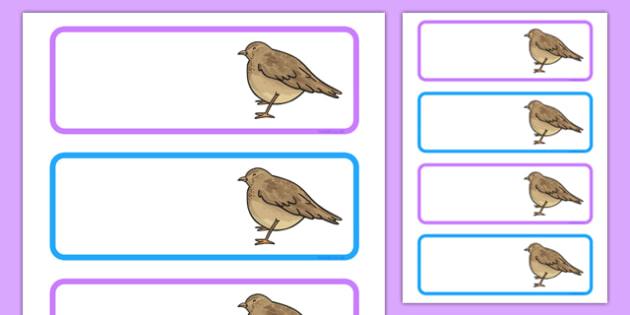 Skylark Themed Editable Drawer Labels - skylark, drawer, peg, name, labels, display, bird, class