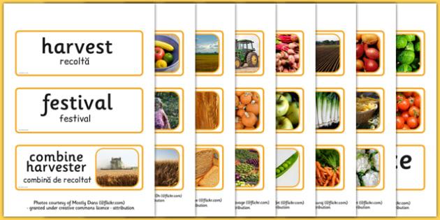 Harvest Topic Words Romanian Translation - romanian, harvest