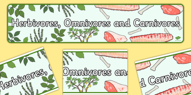 Herbivores Omnivores and Carnivores Display Banner - Banners