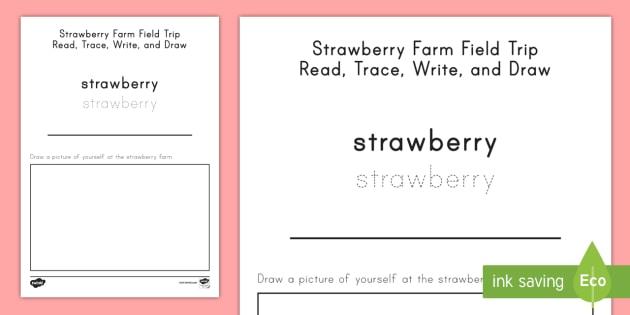 Strawberry Farm Field Trip Draw, Trace and Write Activity Sheet - strawberries, strawberry plants, strawberry farming, strawberry picking, worksheet, strawberry plant