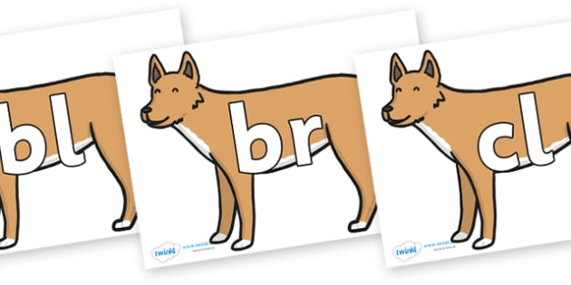 Initial Letter Blends on Dingo - Initial Letters, initial letter, letter blend, letter blends, consonant, consonants, digraph, trigraph, literacy, alphabet, letters, foundation stage literacy