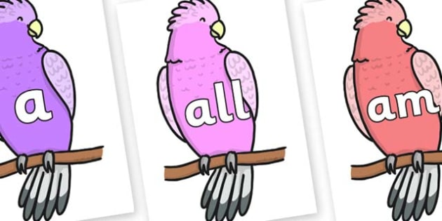 Foundation Stage 2 Keywords on Galah - FS2, CLL, keywords, Communication language and literacy,  Display, Key words, high frequency words, foundation stage literacy, DfES Letters and Sounds, Letters and Sounds, spelling