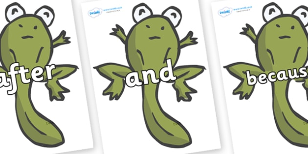 Connectives on Froglets - Connectives, VCOP, connective resources, connectives display words, connective displays