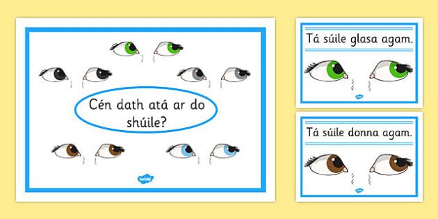 Eye Colour Posters Gaeilge - suile, shuile, gaeilge, eye colour, posters, display