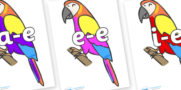 Modifying E Letters on Macaws - Modifying E, letters, modify, Phase 5, Phase five, alternative spellings for phonemes, DfES letters and Sounds