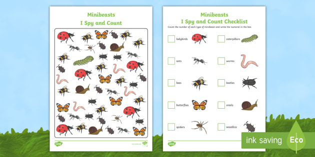 NEW * Minibeasts I Spy and Count Activity - EYFS, Early Years