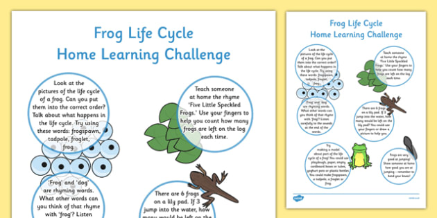 EYFS Frog Life Cycle Home Learning Challenge Sheet Reception FS2 - EYFS, homework, Early years, Life Cycles, frogs, tadpoles, frogspawn, spring, growth, growing