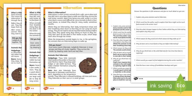 Hibernation Differentiated Reading Comprehension Activity - KS1, hibernation, animals, winter, seasons, reading, comprehension