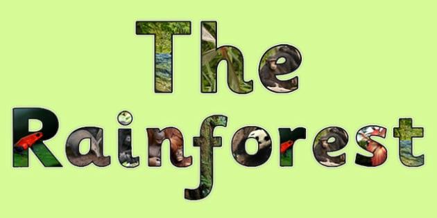 The Rainforest Photo Display Lettering - rainforest, letters