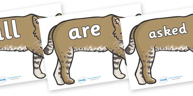Tricky Words on Bobcats - Tricky words, DfES Letters and Sounds, Letters and sounds, display, words