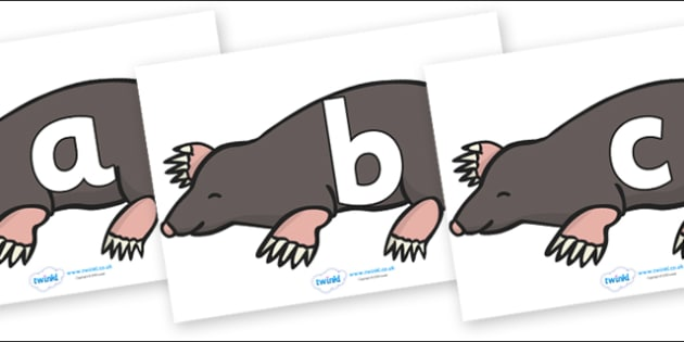 Phoneme Set on Moles - Phoneme set, phonemes, phoneme, Letters and Sounds, DfES, display, Phase 1, Phase 2, Phase 3, Phase 5, Foundation, Literacy