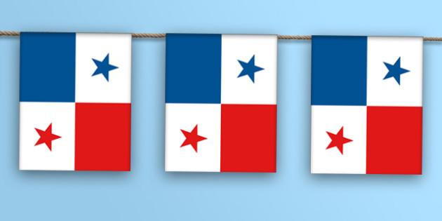Panama Flag Bunting - panama flag, panama, flag, bunting, display bunting, display