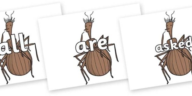 Tricky Words on Miss Spider to Support Teaching on James and the Giant Peach - Tricky words, DfES Letters and Sounds, Letters and sounds, display, words