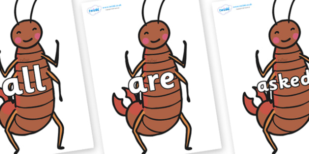 Tricky Words on Earwigs - Tricky words, DfES Letters and Sounds, Letters and sounds, display, words