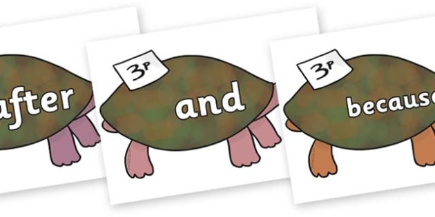 Connectives on Turtle to Support Teaching on The Great Pet Sale - Connectives, VCOP, connective resources, connectives display words, connective displays