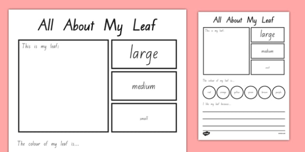 All About My Leaf Worksheet / Worksheet - nz, new zealand ...