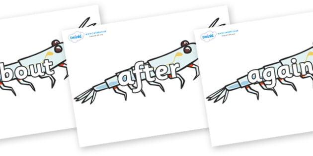 KS1 Keywords on Plankton - KS1, CLL, Communication language and literacy, Display, Key words, high frequency words, foundation stage literacy, DfES Letters and Sounds, Letters and Sounds, spelling