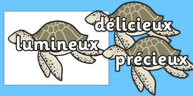 Wow Words on Turtles French - french, wow words, turtles, wow, words