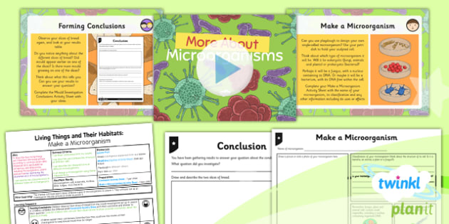 Science: Living Things and Their Habitats: More About Microorganisms Year 6 Lesson Pack 5
