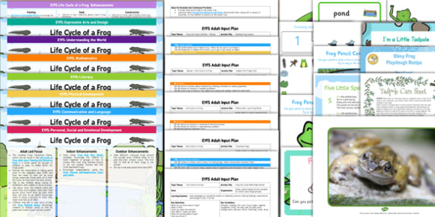 EYFS Life Cycle of a Frog Lesson Plan Enhancements Ideas and Resources Pack - planning