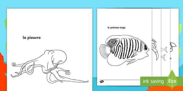 Coloriage La Ferme De Mathurin.Cursive Feuille De Coloriage Avec Mots Sous La Mer