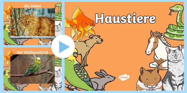 Tierfotos PowerPoint Präsentation - Haustiere, Nutztiere