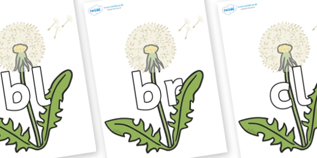 Initial Letter Blends on Dandelion-Seeds - Initial Letters, initial letter, letter blend, letter blends, consonant, consonants, digraph, trigraph, literacy, alphabet, letters, foundation stage literacy