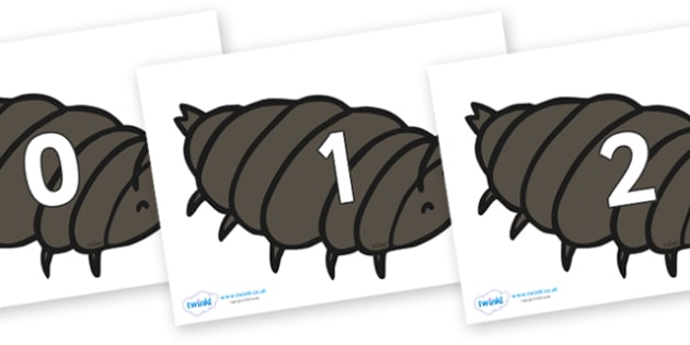 Numbers 0-50 on Woodlice - 0-50, foundation stage numeracy, Number recognition, Number flashcards, counting, number frieze, Display numbers, number posters