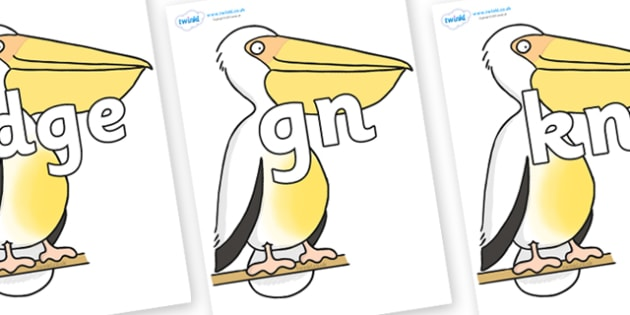 Silent Letters on Pelican to Support Teaching on The Great Pet Sale - Silent Letters, silent letter, letter blend, consonant, consonants, digraph, trigraph, A-Z letters, literacy, alphabet, letters, alternative sounds