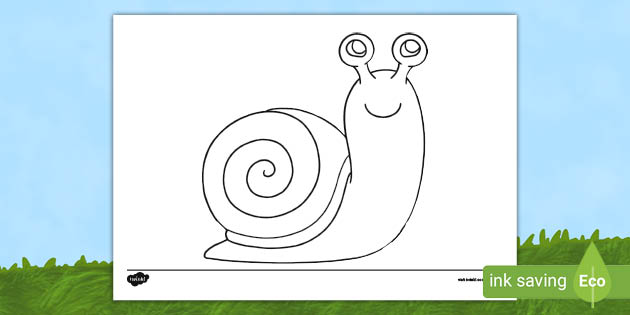 Snail Outline Colouring Sheet (teacher Made)