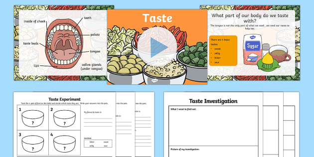 Science Senses Taste PowerPoint - sense, senses, tasting