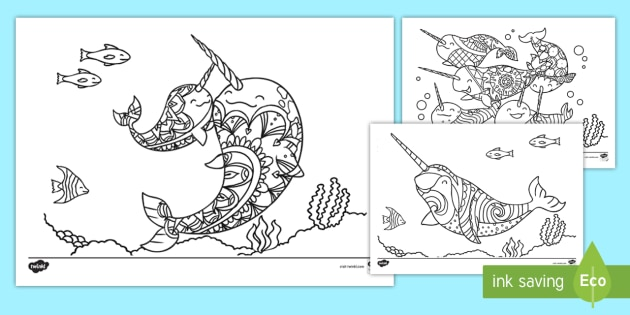 Narwhal Mindfulness Colouring Pages