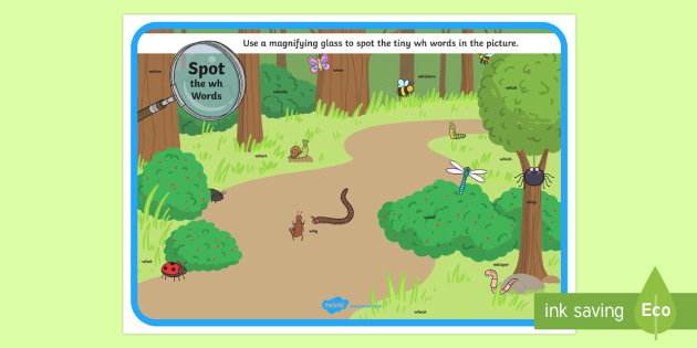Phase 5 wh Words Minibeasts Scene Magnifying Glass Activity Sheet - phonics, letters and sounds, phase 5, wh sound, magnifier, magnifying glass, find, activity, group,