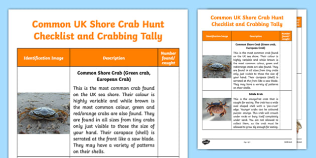 UK Shore Crab Tally and Checklist